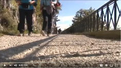 TeleCapodistria, Istria e dintorni, Arca dei sapori, 26 novembre 2017