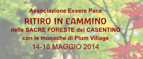 Ritiro in cammino nelle Sacre Foreste dek Casentino, con le monache di Plum Village: 14-18 maggio 2014