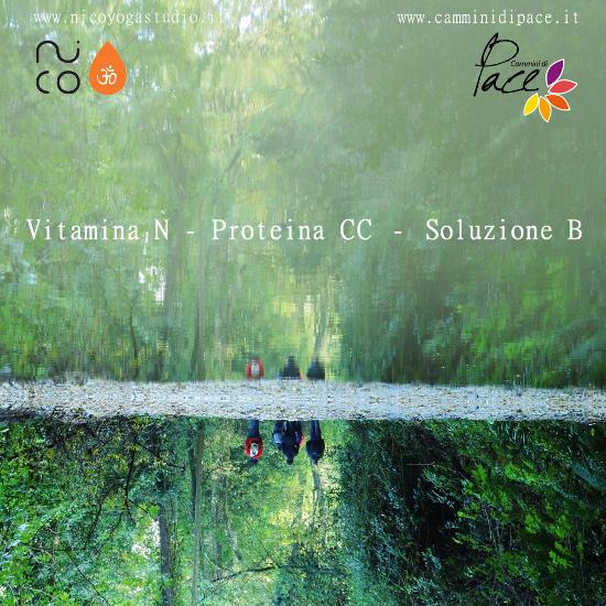 Vitamina N - Proteina CC - Soluzione B