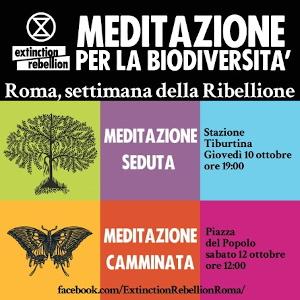 Meditazione per la biodiversità. Extinction rebellion. Roma, settimana della Ribellione.