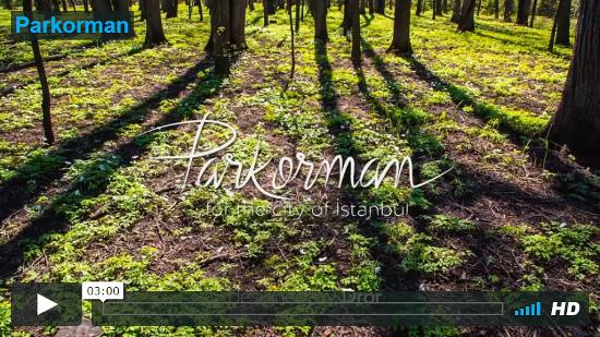 Video Parkorman