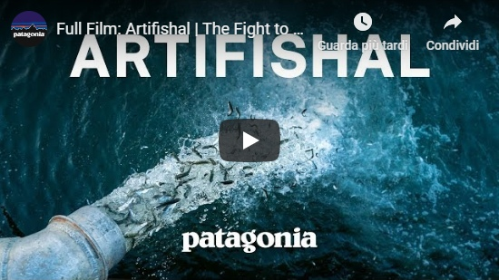 Video Artifishal - film completo con sottotitoli in italiano