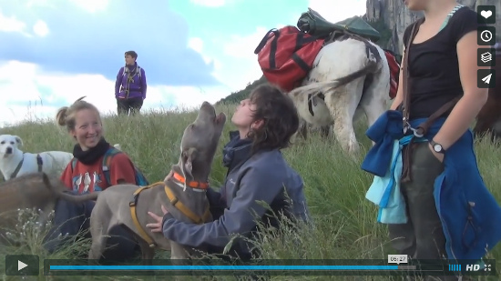 Video Asini e Cani Valle dei Gessi