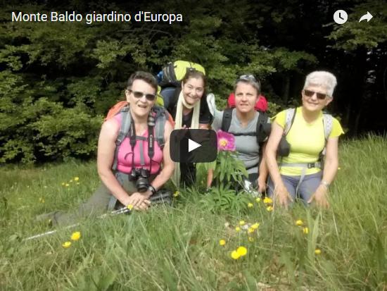 Video Monte Baldo, giardino d'Europa