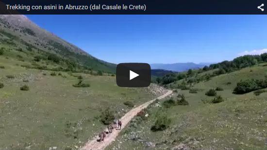 Video Trekking con asini in Abruzzo (dal Casale le Crete)