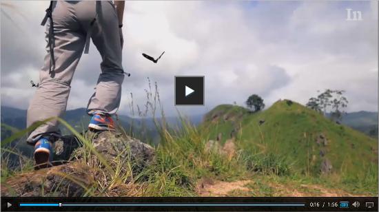 Video Internazionale: Viaggiare è inutile, restate a casa